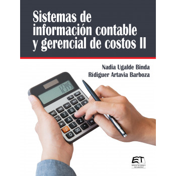 Accounting and cost management information systems II