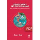Non-Euclidean geometries. Brief history of a great intellectual revolution. (PDF digital book)