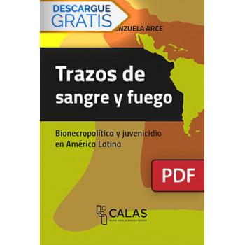 Strokes of blood and fire. Bionecropolítica and juvenicidio in Latin America (DIGITAL BOOK PDF)