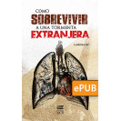 How to Survive a Foreign Storm (ePub eBook)